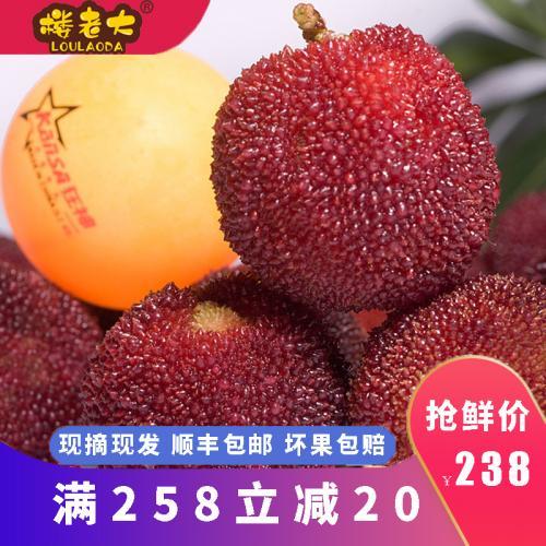 正宗仙居杨梅新鲜杨梅6斤特级东魁杨梅孕妇水果现摘现发农家